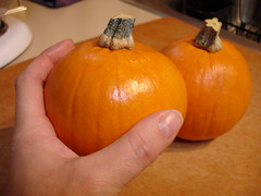 Pumpkin...for pies!