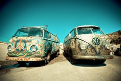 Hippies are back! (FedeSK8) Tags: hippies vw volkswagen 70s sigma1020mm figlideifiori nikond80 fedesk8