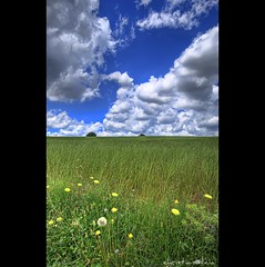 Simply nature (christian&alicia) Tags: sky clouds landscapes cel catalonia cielo nubes fields catalunya camps 1020 hdr nuvols cardedeu vallesoriental catalogne sigma1020 mywinners nikond40x d40x 100commentgroup christianalicia