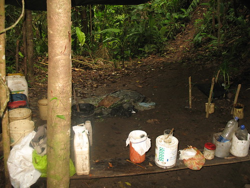 Just your average clandestine jungle drug laboratory