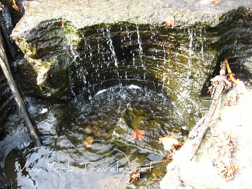 Water Carvings 1