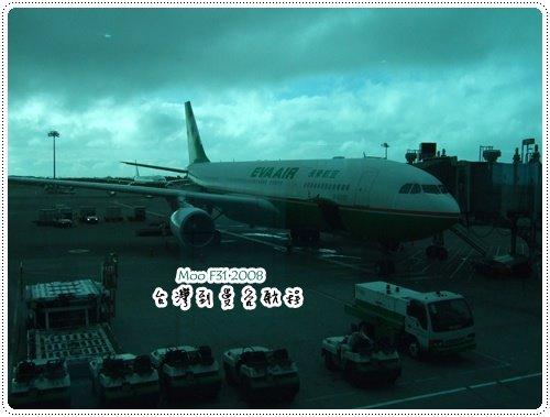 我們要搭的長榮班機