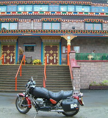 buddhist guzzi