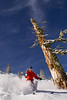 A female skier finds powder in the backcountry of Alpine Meadows