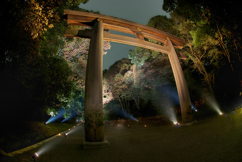 Meiji Jingu Lightened 11