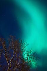 Aurora Borealis by zetson, on Flickr
