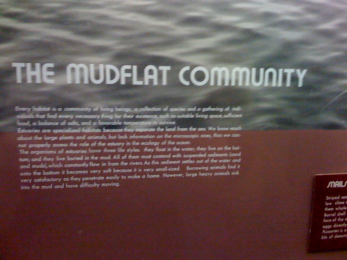 LACMNH mudflats sign
