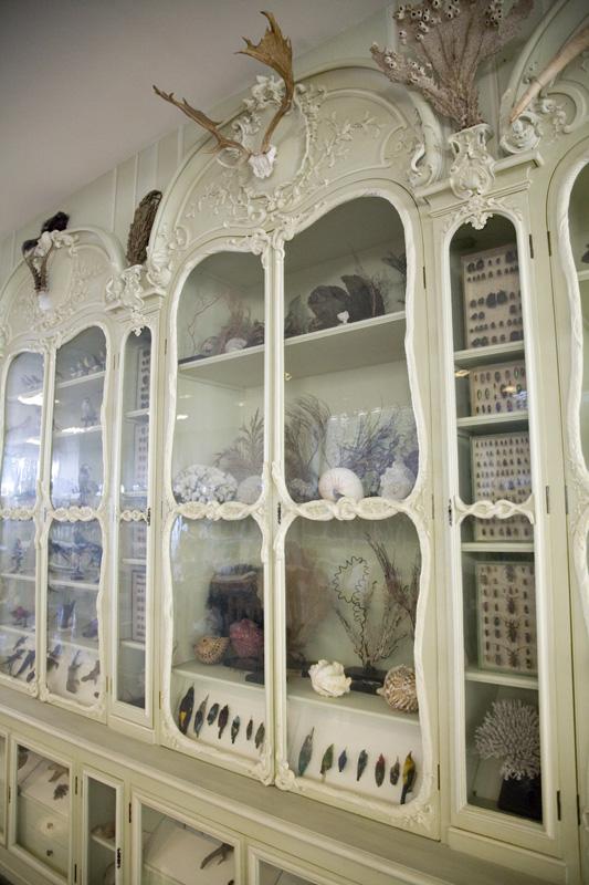 Morbid Anatomy Cabinet Of Curiosities Of Bonnier De La Mosson