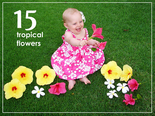 15flowers