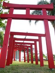 Torii gates 1