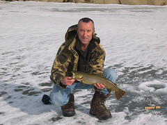 Tom With Brown Trout (fethers1) Tags: icefishing laketrout grossreservoir