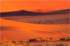 Sossusvlei 05 (Brian Preen) Tags: desert dunes scenic namibia tectures megashot