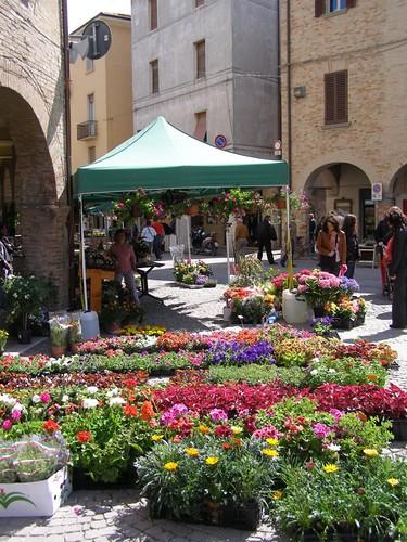 La Tavola Marche - nearby town