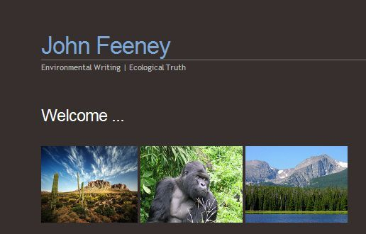 johnfeeney.net screenshot