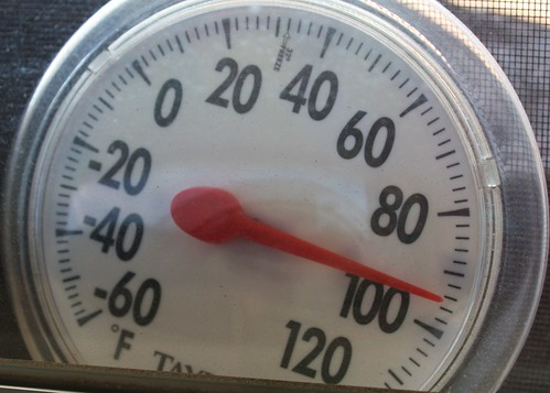 a thermometer during a heat wave