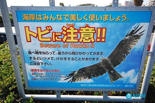 enoshima milano