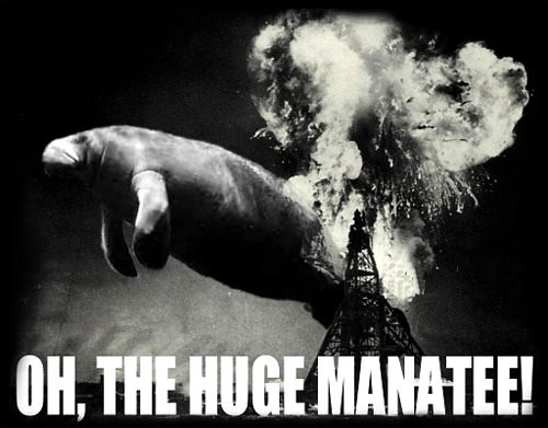 Oh,the Huge Manatee!