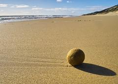 (dalinean) Tags: ocean sea beach sand sigma australia sd10 westaustralia