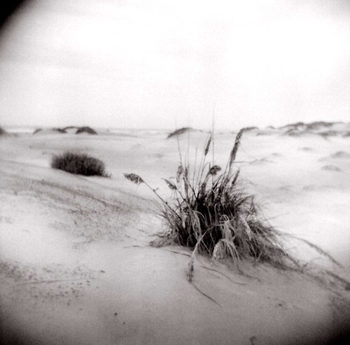 south padre island -beach/ holga