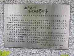 97.05.08明正國小菩提樹牆DSCN1682