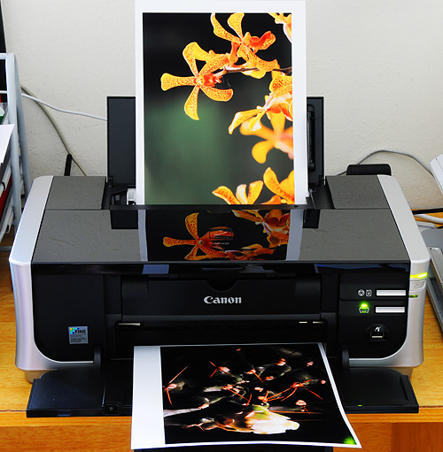 The Canon Pixma iP4500 printer