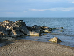 A Rocky Shore (gonisj) Tags: seagulls lake beach water swimming sand rocks erie rockybeaches