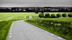 The long and winding road (Per Foreby) Tags: road green landscape panasonic explore gs thelongandwindingroad tz5 davidarchuleta