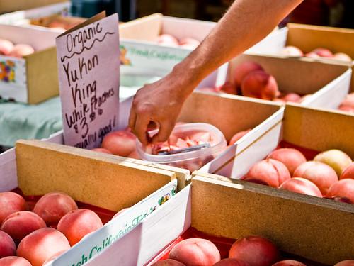 Peach Samples
