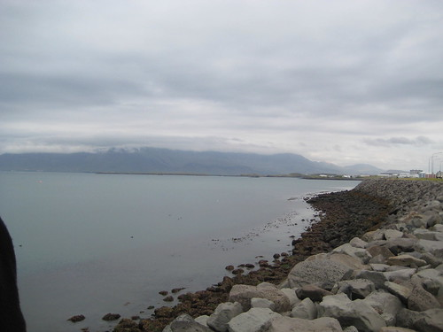 Reykjavik - the shore