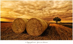 The Last Bales (Gert van Duinen) Tags: trees sunset sky holland tree nature netherlands field clouds landscape countryside scenery cloudy rustic digitalart scenic pasture land hay groningen cinematic landschaft dri landschap haybales naturescape dutchartist nikond80 landschaftsaufnahme cresk tokinaatx124pro landscapesdreams gertvanduinen photoartbloggroup hoyapro groningeninbeeld
