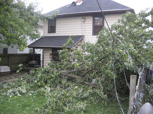Wind Storm 2008 024