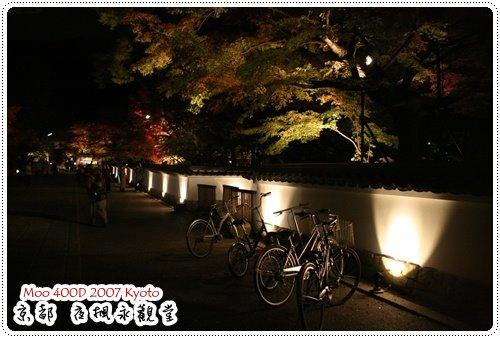 夜楓永觀堂-3
