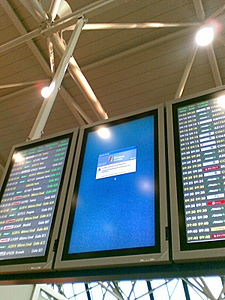 Windows crash Fiumicino airport