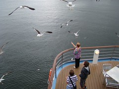 see in the Gran Voyager cruiser (beeing-myself) Tags: sea mar gaviotas cruiser seaguls gavines granvoyager