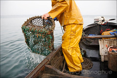 HowthLobsterman13 (Con Dublin) Tags: ireland sea howth dublin irish fish harbor boat fishing fisherman marine europe european harbour shrimp pot mooring lobster float skiff trawler lobsterpot lobsterman seafishing oilskins