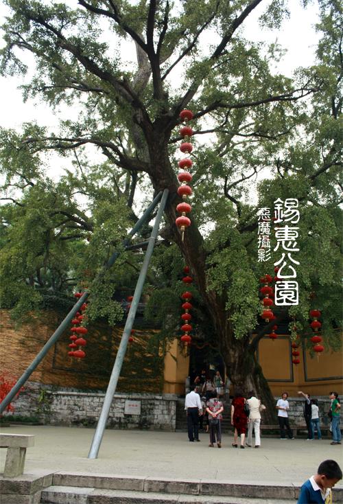 china__f11a