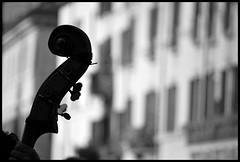 ... (Federica Mu ) Tags: roma piazzanavona supershot blackwhitephotos voleviuncontrabbasso artofdetail