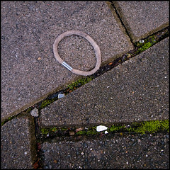 R0011418 lostAndFound07 (.maique.) Tags: travel holland netherlands amsterdam square pavement lookdown grdigital ricoh elastic scrunchies grd grd2 oldpublic grdii