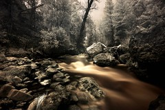 The river (infrared). (coulombic) Tags: water canon utah exposure infrared 5d canon5d canoneos digitalinfrared blueribbonwinner canoneos5d infraredphotography forreals gabefarnsworth maxmaxcom canonef1635mmf28lii betterthangood canoninfrared utahinfrared coulombic llcldp infraredwater photocontesttnc09