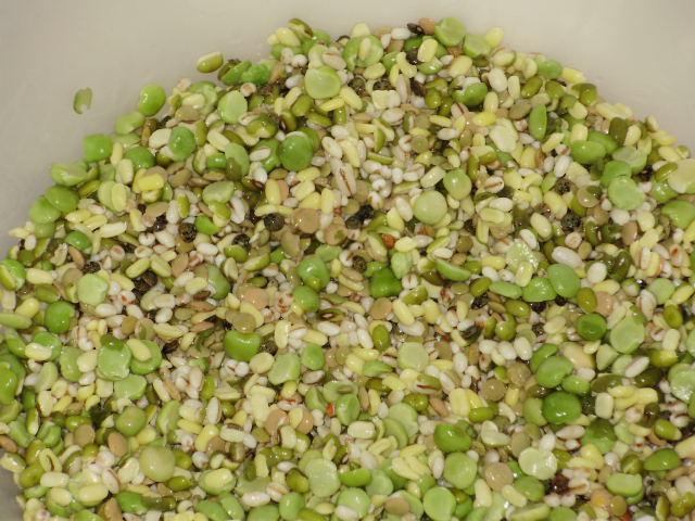 Barley+Sorghum+Masoor+Moong+Green field peas.