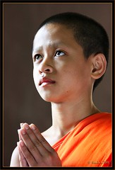 Nen (Ursula in Aus (Away)) Tags: boy portrait orange male youth thailand temple buddhist buddhism thai wai wat nen phrapathomchedi nakhompathom youngmonk globalspirit earthasia  lesamisdupetitprince nehn