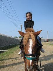 20090130-yaya騎馬