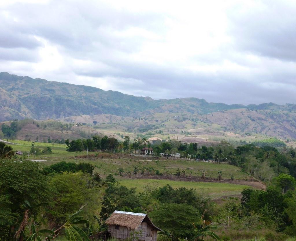 Negros-Dumaguete-Mabinay-Bacolod (121)