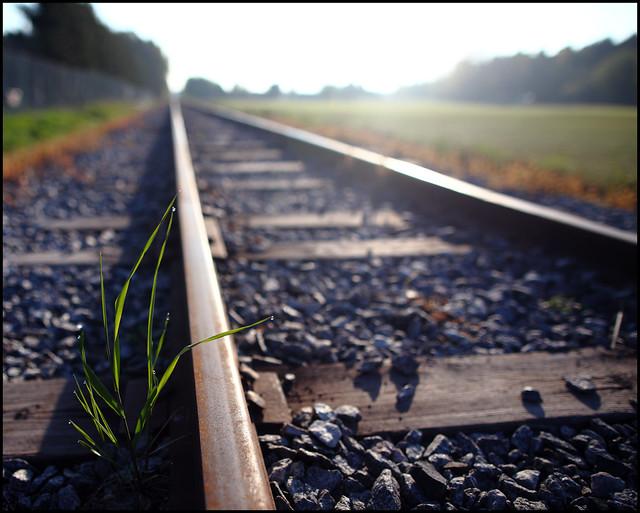 Rail II