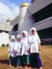 MalaysiaMosq4