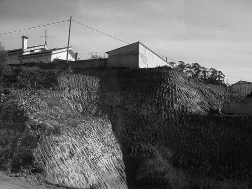 DSC02087© fatima ribeiro2008