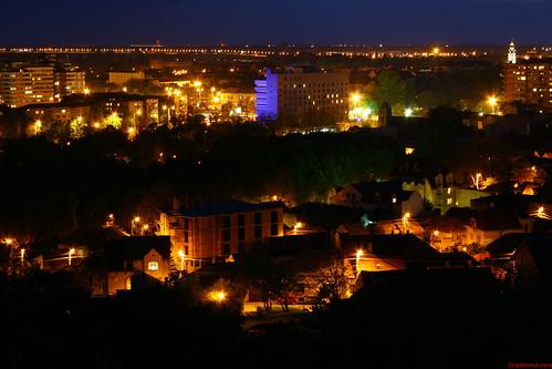 Oradea_By_Night, Ciuperca