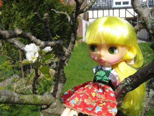 [Avril 2008] Des Blythes et des Fleurs - Page 2 2450301849_b64dd5d39f