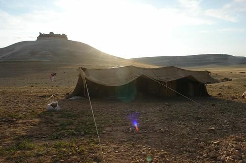 Bedouin tent below Qalaat Al Shmamis