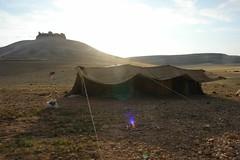 Bedouin tent below Qalaat Al Shmamis (CharlesFred) Tags: peace middleeast syria bedouins hospitality bedouin siria honour  syrien syrie  suriye  syrianarabrepublic    shoufsyria    bedouinsinsyria syrianbedouins bedouinlifestyle welovesyria aljumhriyyahalarabiyyahassriyyah siri